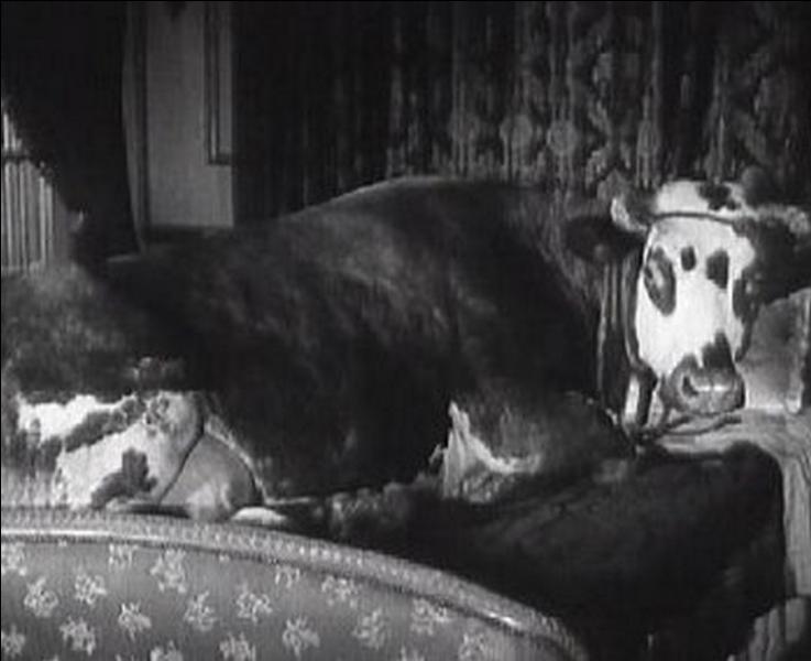 """A quel réalisateur espagnol doit-on cette scène surréaliste; une vache dans un lit dans le film """" L'Age d'or """" ?"""