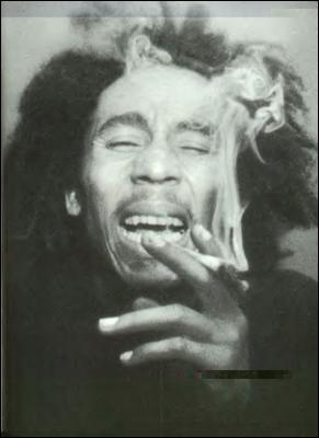 La Cour suprême des États-Unis a rejeté l'appel de fabricants de vêtements qui soutenaient avoir le droit de vendre des t-shirts à l'effigie de l'icône du reggae : Bob Marley. Ces entreprises ont vendu des vêtements avec l'image du chanteur dans les magasins Walmart etc... sans avoir obtenu l'autorisation des enfants de Marley. Bob aurait eu 70 ans en 2015. Comme quoi la drogue ça ne conserve pas.