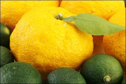 Quel est ce fruit asiatique provenant de l'arbre du même nom, qui ressemble à une grosse mandarine, avec une peau épaisse, bosselée, très à la mode dans la cuisine actuelle ?