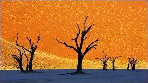 On dirait un tableau d'un peintre mais non, il s'agit d'un paysage réel. Où pourrez-vous l'admirer ?