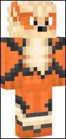 Ce personnage a le skin d'un Pokémon. Lequel ?