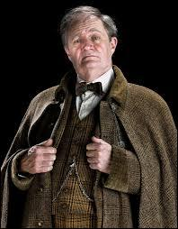 De quelle maison le professeur Slughorn est-il le directeur ?