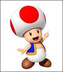 """Comment s'appelle le personnage du jeu vidéo """"Mario Bros."""" qui a la forme d'un champignon ?"""