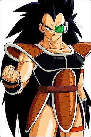 Comment s'appelle le frère de Son Goku ?