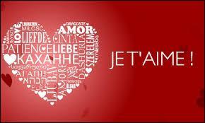 """En wallon, que traduit-on par """"je t'aime"""" en français ?"""