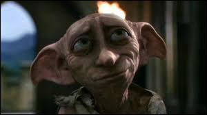 Grâce à quel vêtement Dobby est-il libéré ?