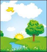 Un petit oiseau jaune qui survole la campagne ensoleillée...Quelle est cette marque ?