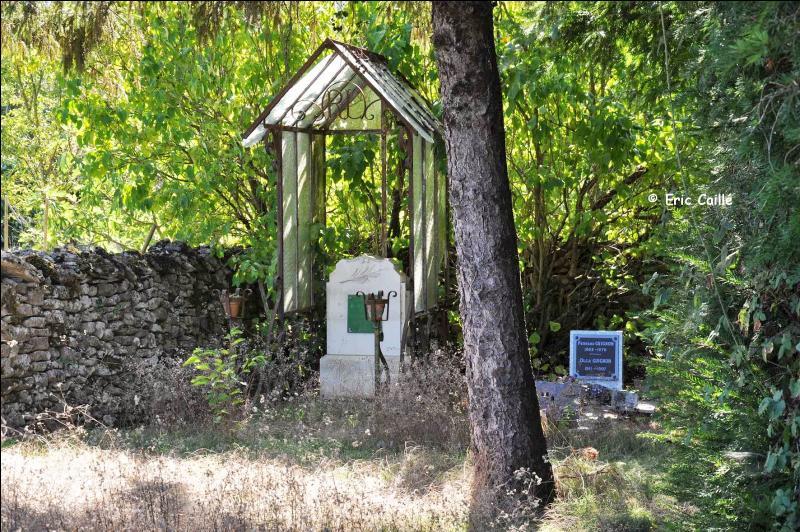 Dans le sud Deux-Sèvres vous pourrez voir de petits cimetières familiaux témoins de l'importance du protestantisme dans cette région, ils sont plantés parfois de cyprès, quel autre arbre y est aussi souvent présent ?