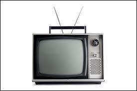 Parmi ces chaînes de télévision, laquelle fut créée durant les années 80 ?