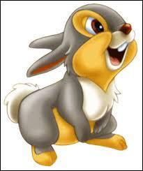 Belle cherche Clochard. Mais, quand elle est dans les rues de la ville, elle tombe sur un lapin. Elle lui demande s'il a vu Clochard. Qui l'a aidée ?