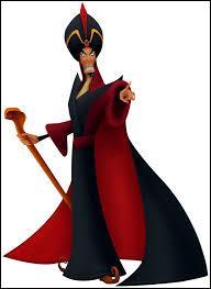Jafar est en train d'organiser son plan pour tuer Donald. Il se fait aider par une femme qui a une peau très blanche. Qui est-ce ?