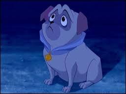 Cendrillon a perdu sa chaussure. Un petit chien, qui était avec Pocahontas, griffe sa porte et lui donne sa chaussure. Comment s'appelle-t-il ?