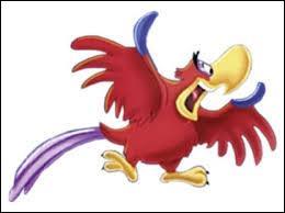 Belle est dans son château. Elle entend un bruit dans la grande salle. Elle arrive et voit un perroquet rouge chanter et voler partout. Qui est-il ?
