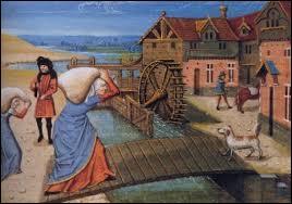 Les villageois qui utilisaient les moulins, les fours et les pressoirs mis à disposition par le seigneur devaient s'acquitter d'une taxe, laquelle ?