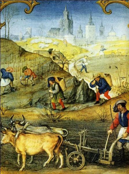 Appelé parfois arrage, gerbage ou terrage, c'est le loyer des terres louées au seigneur, il se calcule en fonction de la récolte obtenue. Quel est cet impôt ?