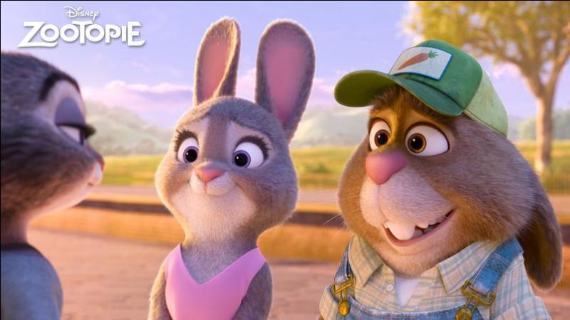 A part des carottes, que vendent les parents de Judy ?