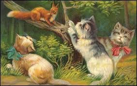 Les trois chats regardent l'écureuil perché sur une branche.