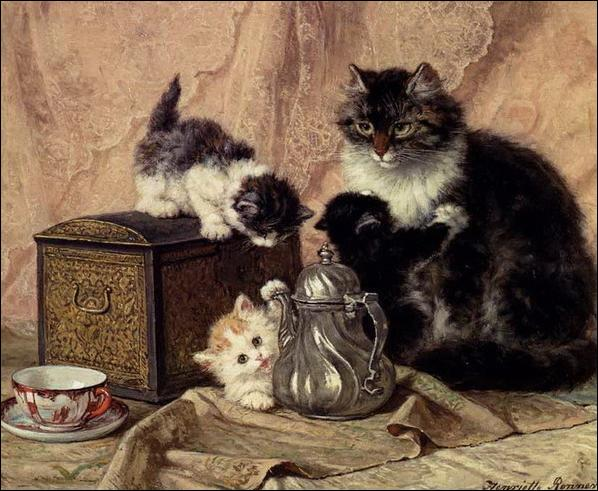 Combien de chatons a cette chatte ?