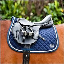 Que faut-il faire avant de poser une selle sur un poney ?