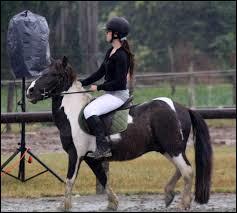 Faut-il monter à cheval lorsqu'il n'y a pas la monitrice (moniteur) ?