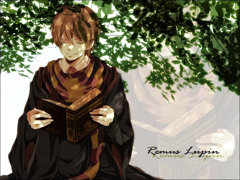 Maintenant mon professeur préféré. Quel est le Patronus de Remus Lupin ? (Même s'il n'est pas donné, je crois qu'on peut le deviner. Indice : le personnage est un loup-garou.)