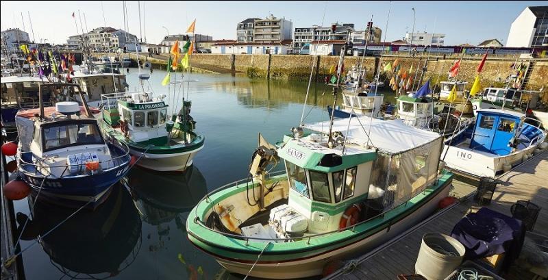 Quelle ville vendéenne, spécialisée dans la pêche aux poissons bleus (sardines, maquereaux), est née de l'unification de deux communes situées de part et d'autre de l'embouchure de la Vie ?