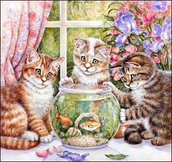Que regardent les chats ?