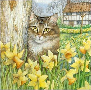 Que sont les fleurs devant le chat ?