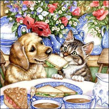 Que font le chien et le chat ?