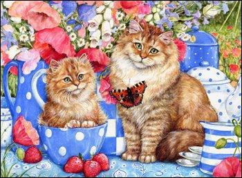 Que sont les fruits devant les chats ?