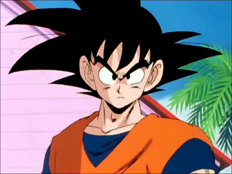 """Son Goku est un personne du manga """"One Piece""""."""