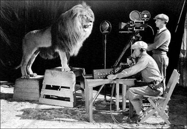 En 1929, eut lieu le tournage du plus célèbre générique de l'histoire du cinéma. En effet, le lion qui rugit a hanté la tête de bien des enfants. Pour quelle compagnie cela fut-il enregistré ?
