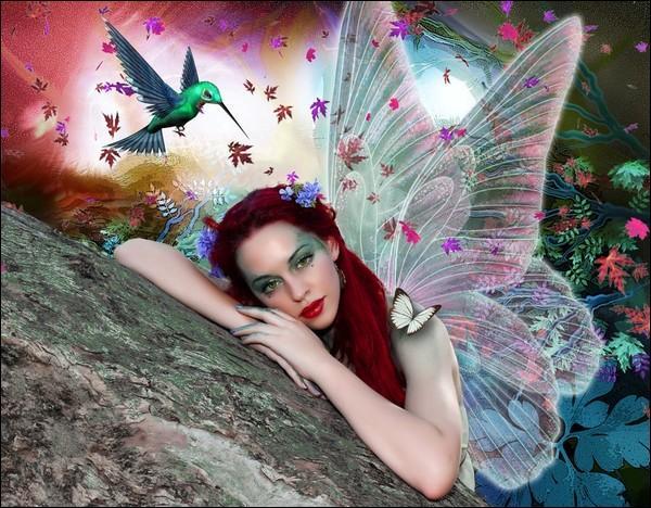 Quel oiseau vole au-dessus de la fée ?