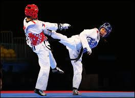 Vrai ou faux ? Mourad Laachraoui, frère d'un des kamikazes de Bruxelles, est un champion de judo.