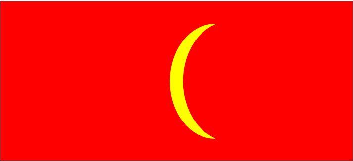 Que faut-il changer sur ce drapeau pour reconnaître le drapeau vietnamien ?