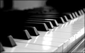 Je dois être joué de deux mains, ou quatre selon les morceaux. Je suis assez difficile à déplacer, je suis :