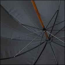 C'est assez efficace quand il pleut !