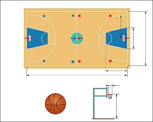 Quelles sont les dimensions réglementaires d'un terrain de basket ?