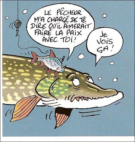 """Quel poisson de nos fleuves et rivières est surnommé le """"grand-gousier"""" ?"""