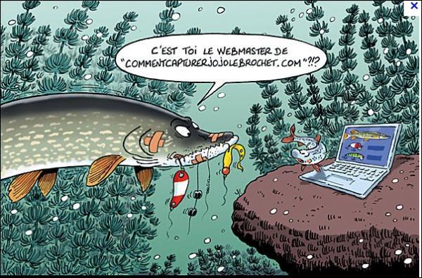 Quel leurre allez-vous utiliser pour pêcher le brochet ?