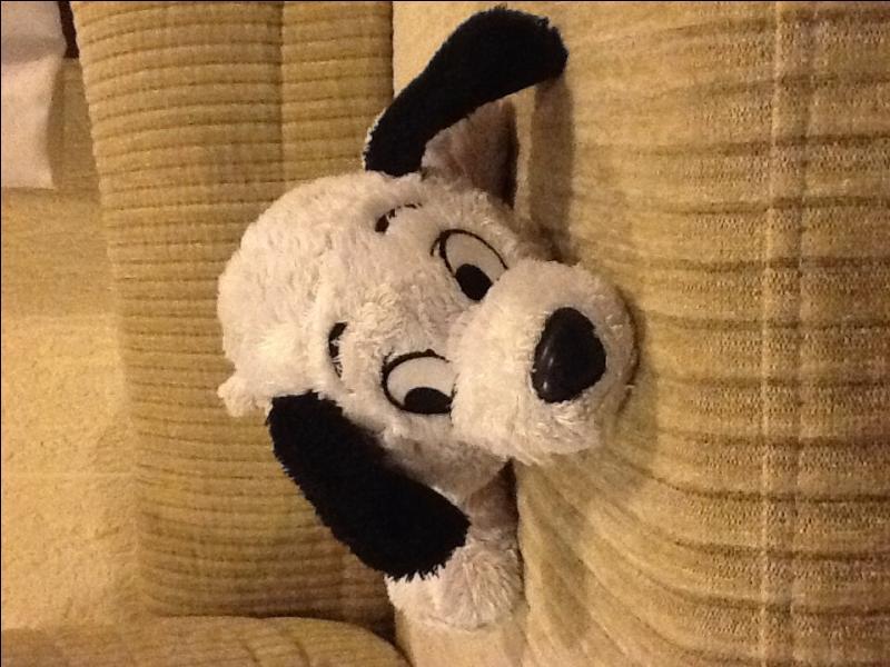 Dans quel film y a-t-il ce chien ?