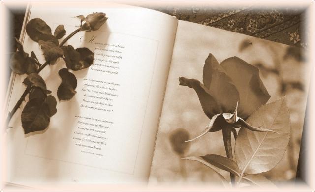 """De quel recueil est issu l'extrait de ce poème """"Ô doute l'âme plonge et rapporte le doute"""", écrit par Victor Hugo ?"""
