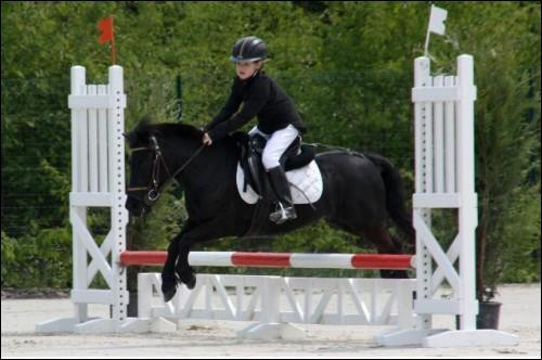 Quizz galop 1 quiz chevaux - Jeux de poney qui saute ...