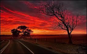 Ce pays se situe en Océanie, il a subi la colonisation. La langue parlée dans ce pays est l'anglais et on le surnomme le pays des kangourous.