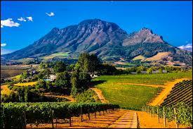 Ce pays se situe en Afrique, il est connu pour avoir eu comme président Nelson Mandela et on y parle l'afrikaans.