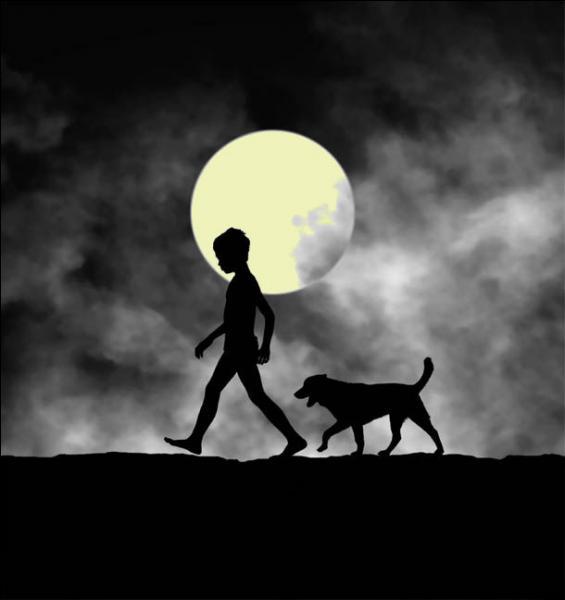 Que dire de ce chien qui m'est très fidèle et qui est toujours avec moi ?
