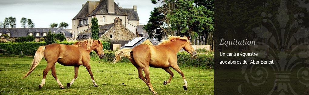 quizz galop 1 quiz galop equitation cheval. Black Bedroom Furniture Sets. Home Design Ideas