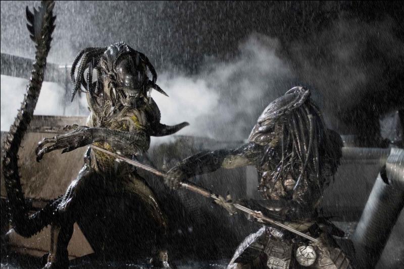 Les extraterrestres se battent aussi entre eux ! Quelles races d'extraterrestres s'opposent dans ce film réalisé en 2004 par Paul W. S. Anderson ?