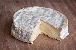 Fromage au lait de vache, à pâte molle, non pressée et non cuite composé de 45 à 50 % de matières grasses - originaire de Seine et Marne - un des fleurons du patrimoine fromager français