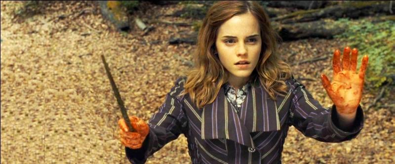 La colère finit par étouffer son chagrin et la vengeance se substitua à son malheur. Après de longues délibérations, Hermione tua Ginny. C'était le seul moyen pour faire revenir Harry à la raison…